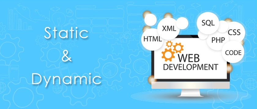 Difference Between Static vs Dynamic Website
